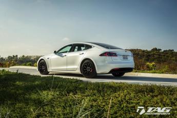 17' Tesla Blackout